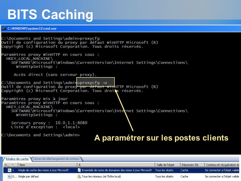 BITS Caching Background Intelligent Transfer Service Documenté dans la RFC 2616 Utilisé avec : Automatique update Windows update Microsoft update Véri