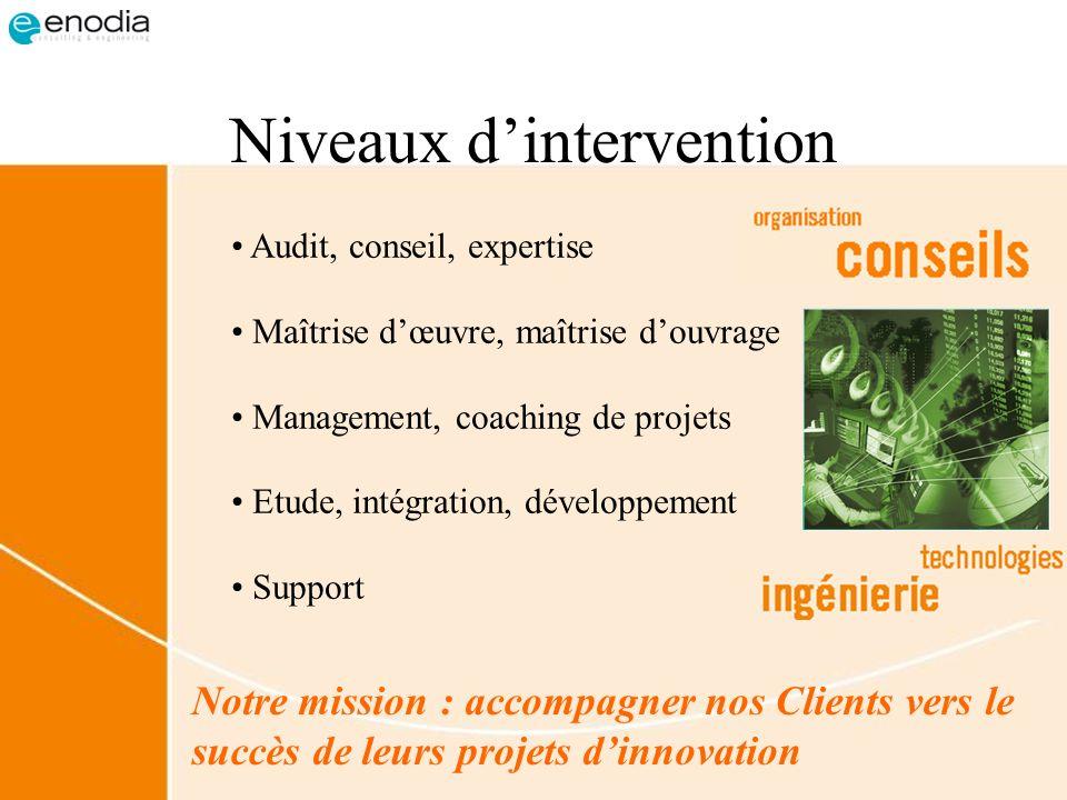 Niveaux dintervention Audit, conseil, expertise Maîtrise dœuvre, maîtrise douvrage Management, coaching de projets Etude, intégration, développement S