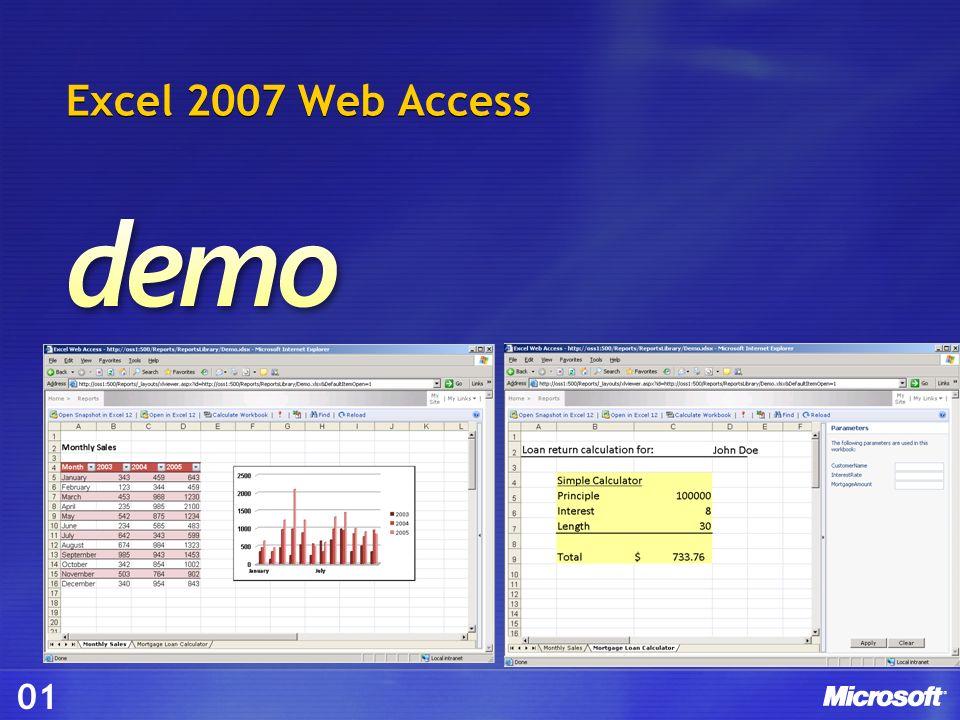 Excel 2007 Web Access 01