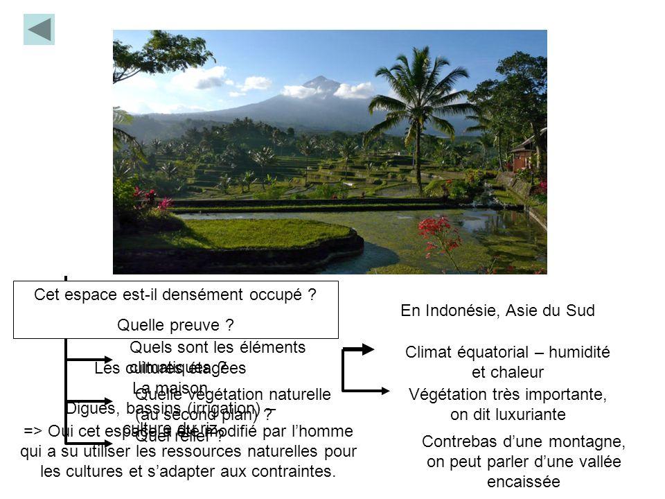 Où sommes-nous ? Quels sont les éléments climatiques ? Quelle végétation naturelle (au second plan) ? Quel relief ? En Indonésie, Asie du Sud Climat é