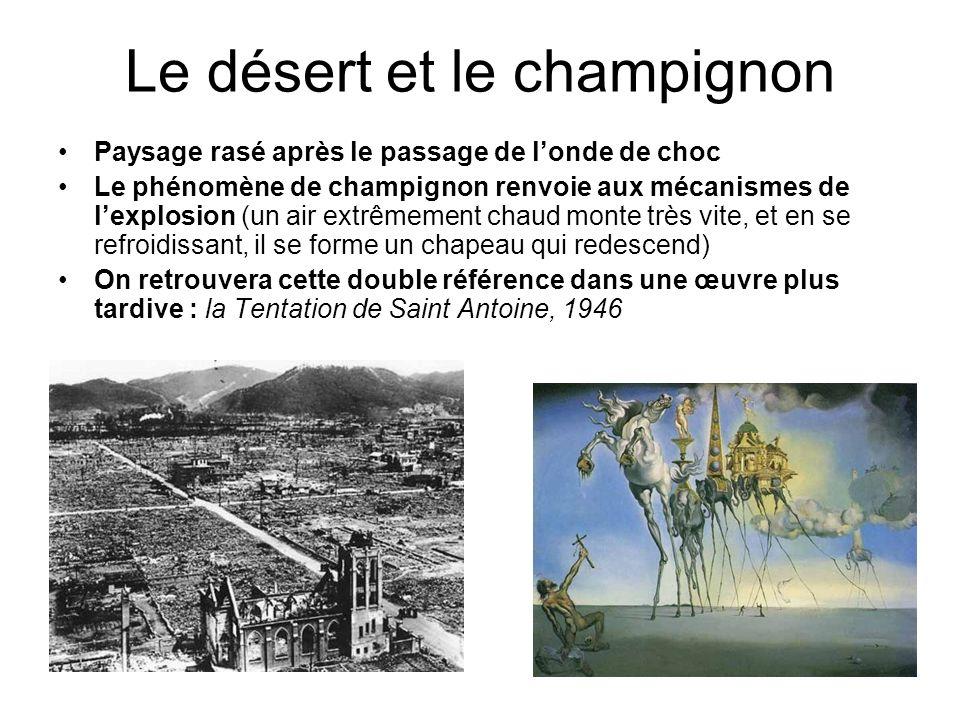 Le désert et le champignon Paysage rasé après le passage de londe de choc Le phénomène de champignon renvoie aux mécanismes de lexplosion (un air extr
