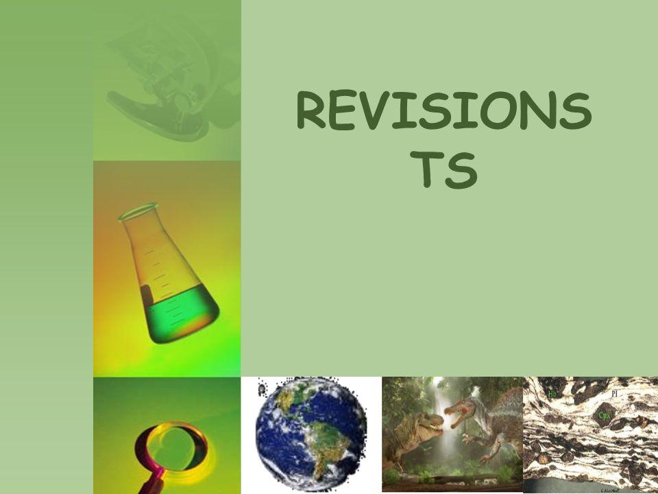 REVISIONS TS