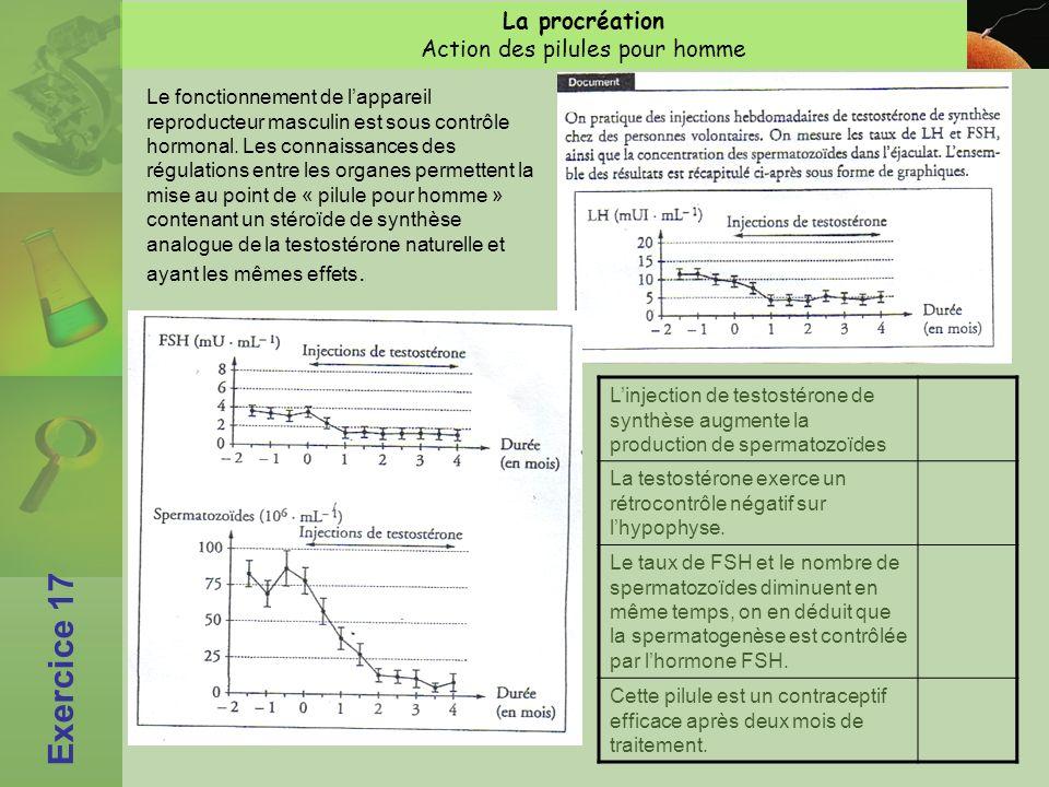 La procréation Action des pilules pour homme Exercice 17 Le fonctionnement de lappareil reproducteur masculin est sous contrôle hormonal.