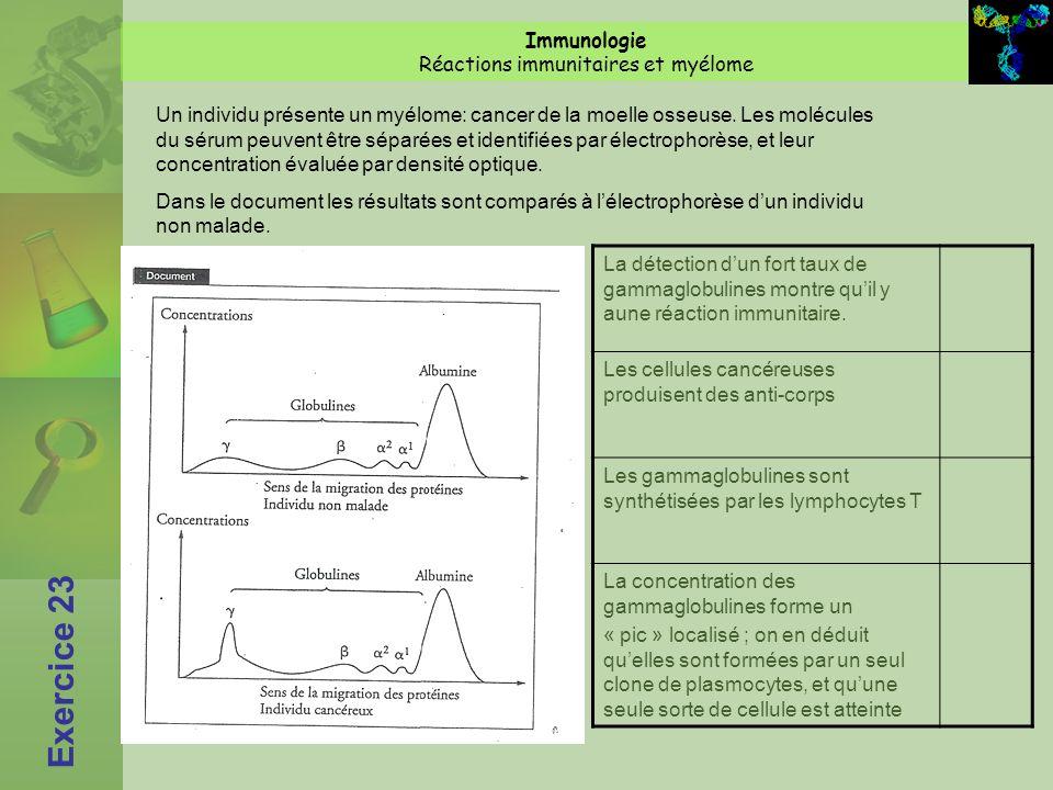 Exercice 23 Immunologie Réactions immunitaires et myélome La détection dun fort taux de gammaglobulines montre quil y aune réaction immunitaire.