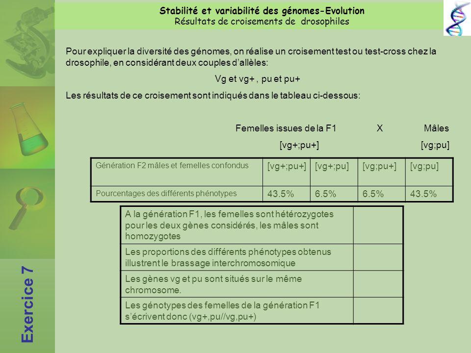 Exercice 7 Stabilité et variabilité des génomes-Evolution Résultats de croisements de drosophiles Pour expliquer la diversité des génomes, on réalise un croisement test ou test-cross chez la drosophile, en considérant deux couples dallèles: Vg et vg+, pu et pu+ Les résultats de ce croisement sont indiqués dans le tableau ci-dessous: Femelles issues de la F1 XMâles [vg+;pu+][vg;pu] Génération F2 mâles et femelles confondus [vg+;pu+][vg+;pu][vg;pu+][vg;pu] Pourcentages des différents phénotypes 43.5%6.5% 43.5% A la génération F1, les femelles sont hétérozygotes pour les deux gènes considérés, les mâles sont homozygotes Les proportions des différents phénotypes obtenus illustrent le brassage interchromosomique Les gènes vg et pu sont situés sur le même chromosome.