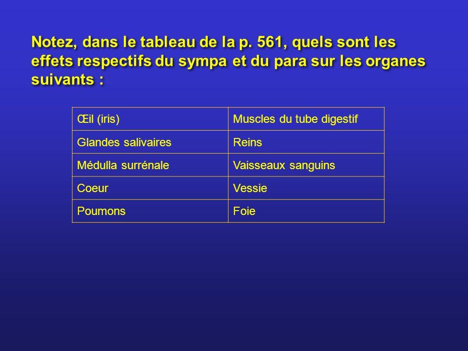 Notez, dans le tableau de la p. 561, quels sont les effets respectifs du sympa et du para sur les organes suivants : Œil (iris)Muscles du tube digesti