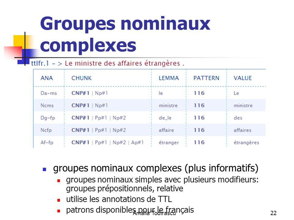 Amalia Todirascu22 Groupes nominaux complexes groupes nominaux complexes (plus informatifs) groupes nominaux simples avec plusieurs modifieurs: groupe