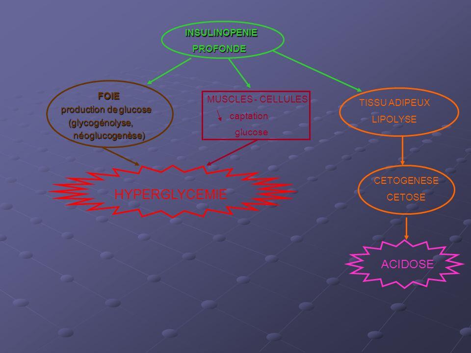 Entre 1.5 et 3 mmol/L : - installation - 8 UI insuline rapide SC Cétonémie 3 mmol/L : - installation - hydratation et insuline IVSE sans attendre résultat du ionogramme