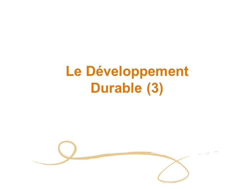 2 Plan Le DD et la RSE Les pressions exercées sur lentreprise et leurs conséquences Le DD : quelles opportunités pour lentreprise .