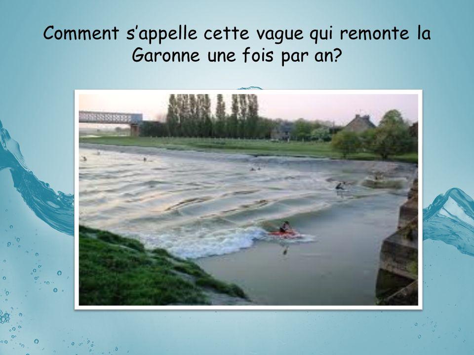 Comment sappelle cette vague qui remonte la Garonne une fois par an?