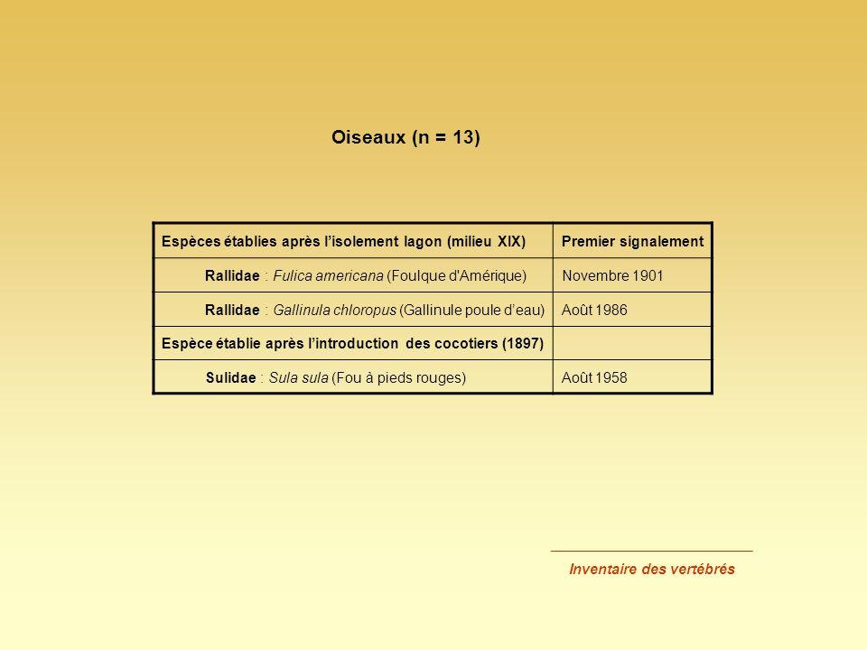 Espèces établies après lisolement lagon (milieu XIX)Premier signalement Rallidae : Fulica americana (Foulque d'Amérique)Novembre 1901 Rallidae : Galli