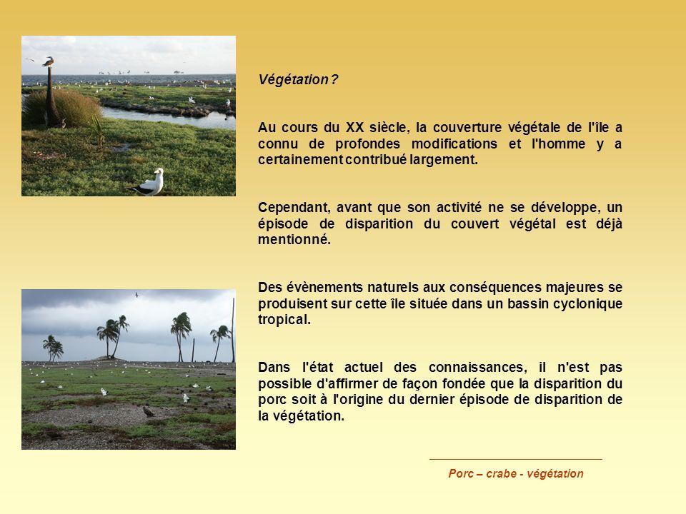 Végétation ? Au cours du XX siècle, la couverture végétale de l'île a connu de profondes modifications et l'homme y a certainement contribué largement