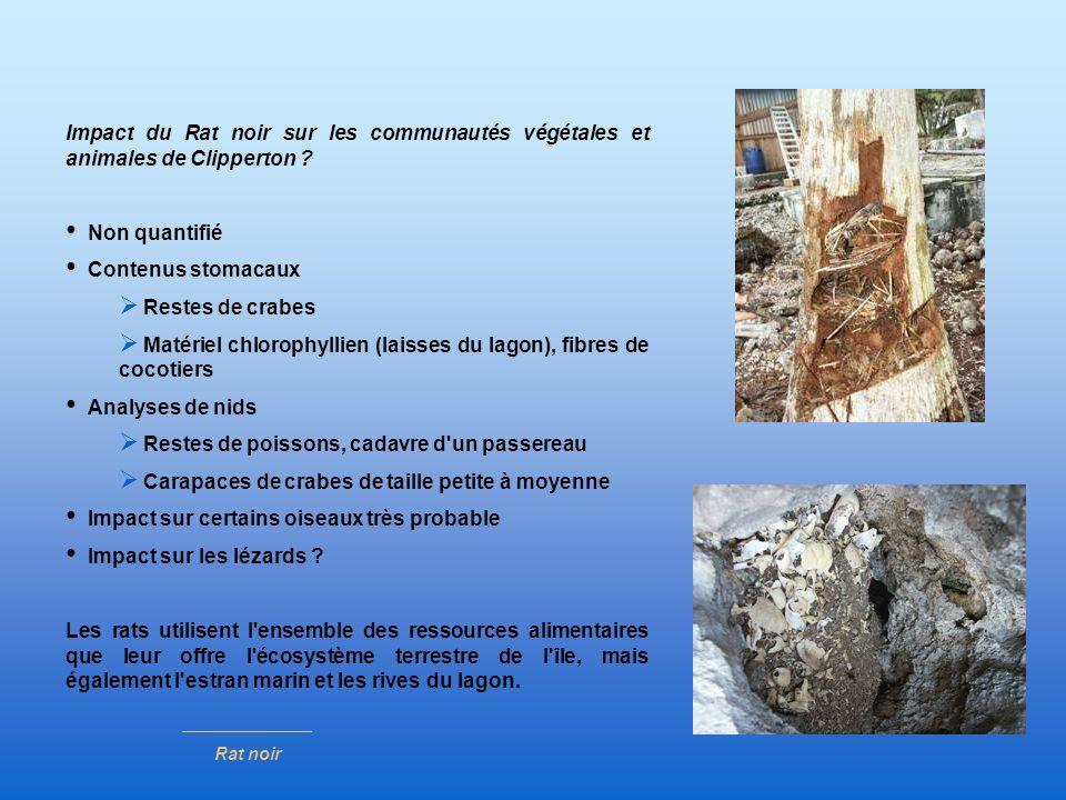 Impact du Rat noir sur les communautés végétales et animales de Clipperton ? Non quantifié Contenus stomacaux Restes de crabes Matériel chlorophyllien