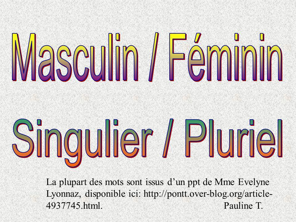 des balais magiques masculin plurielsingulier féminin