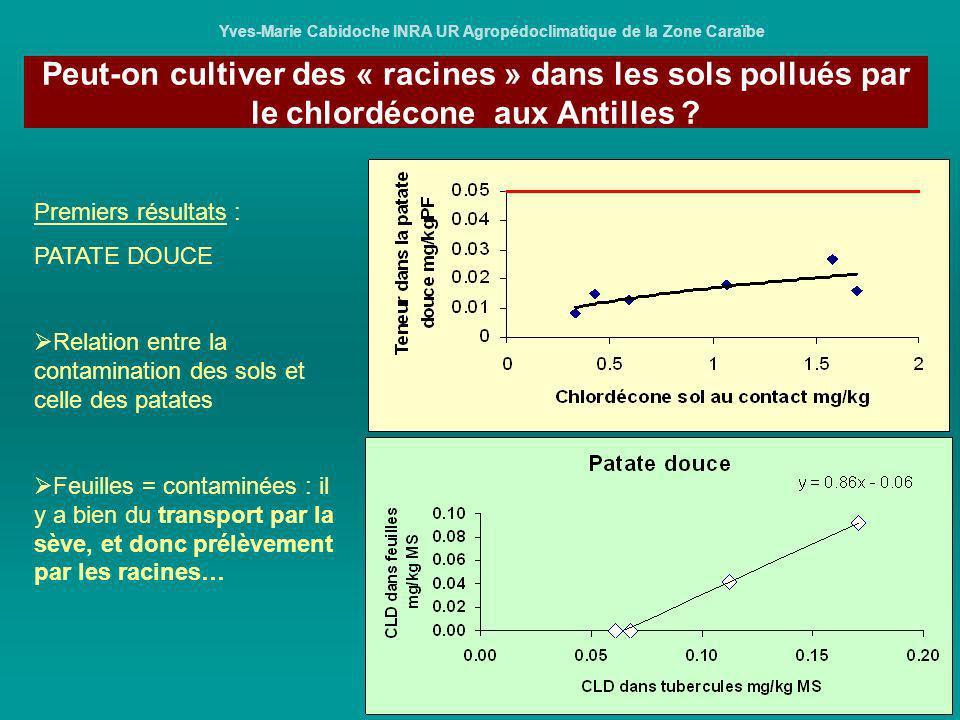 Yves-Marie Cabidoche INRA UR Agropédoclimatique de la Zone Caraïbe Premiers résultats : PATATE DOUCE Relation entre la contamination des sols et celle