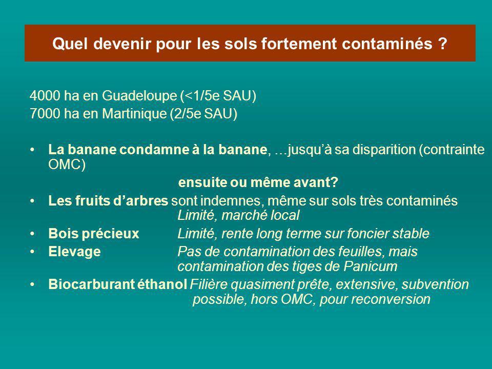 cc 4000 ha en Guadeloupe (<1/5e SAU) 7000 ha en Martinique (2/5e SAU) La banane condamne à la banane, …jusquà sa disparition (contrainte OMC) ensuite