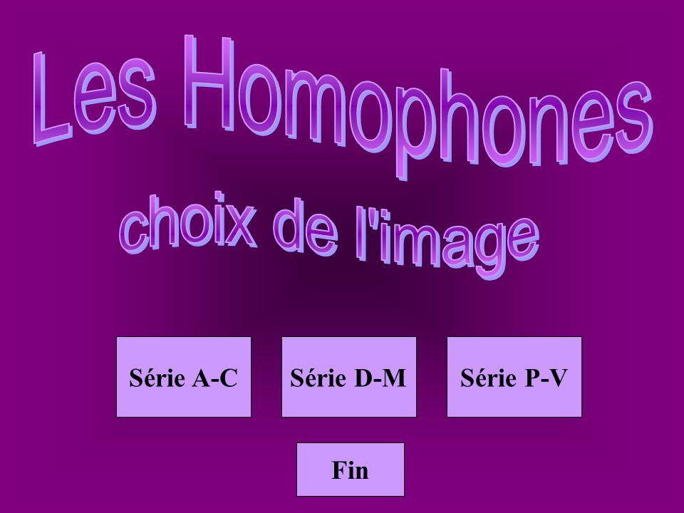 Homoph vin2 vin