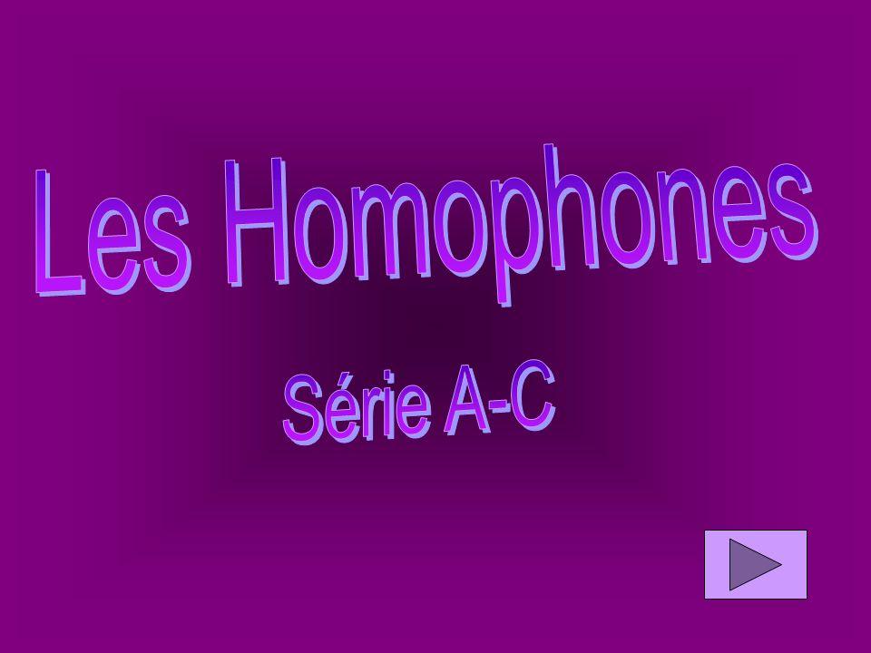Homophones mots Série A-CSérie D-MSérie P-V Fin