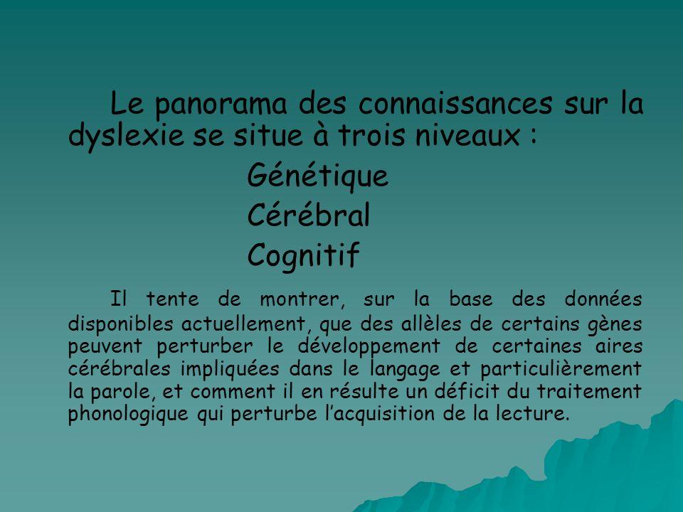 Le panorama des connaissances sur la dyslexie se situe à trois niveaux : Génétique Cérébral Cognitif Il tente de montrer, sur la base des données disp