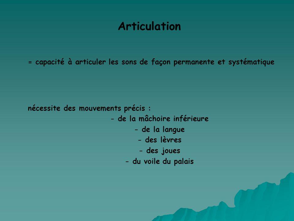 Articulation = capacité à articuler les sons de façon permanente et systématique nécessite des mouvements précis : - de la mâchoire inférieure - de la