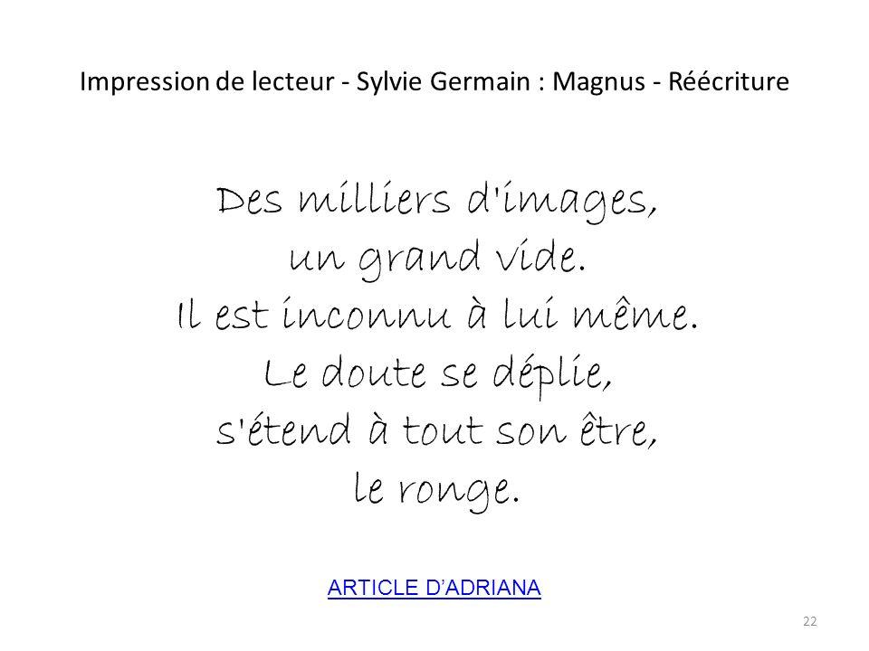 Impression de lecteur - Sylvie Germain : Magnus - Réécriture Des milliers d'images, un grand vide. Il est inconnu à lui même. Le doute se déplie, s'ét