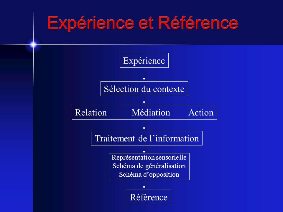 Expérience et Référence Expérience Sélection du contexte RelationMédiationAction Traitement de linformation Représentation sensorielle Schéma de génér