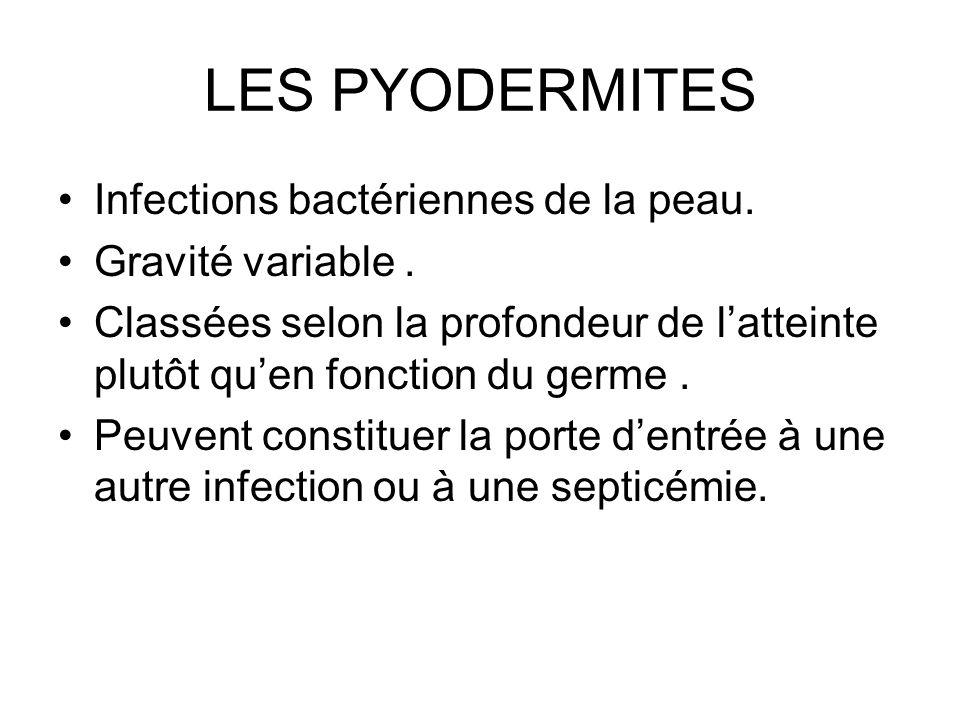 LES PYODERMITES Infections bactériennes de la peau. Gravité variable. Classées selon la profondeur de latteinte plutôt quen fonction du germe. Peuvent