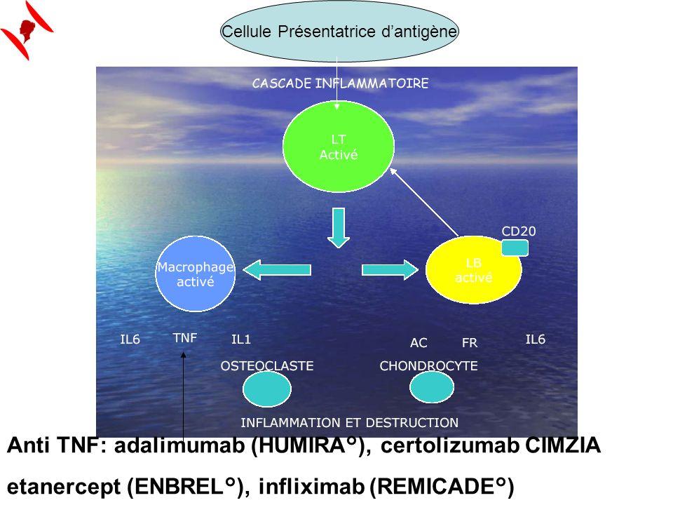 Anti TNF: adalimumab (HUMIRA°), certolizumab CIMZIA etanercept (ENBREL°), infliximab (REMICADE°) Cellule Présentatrice dantigène