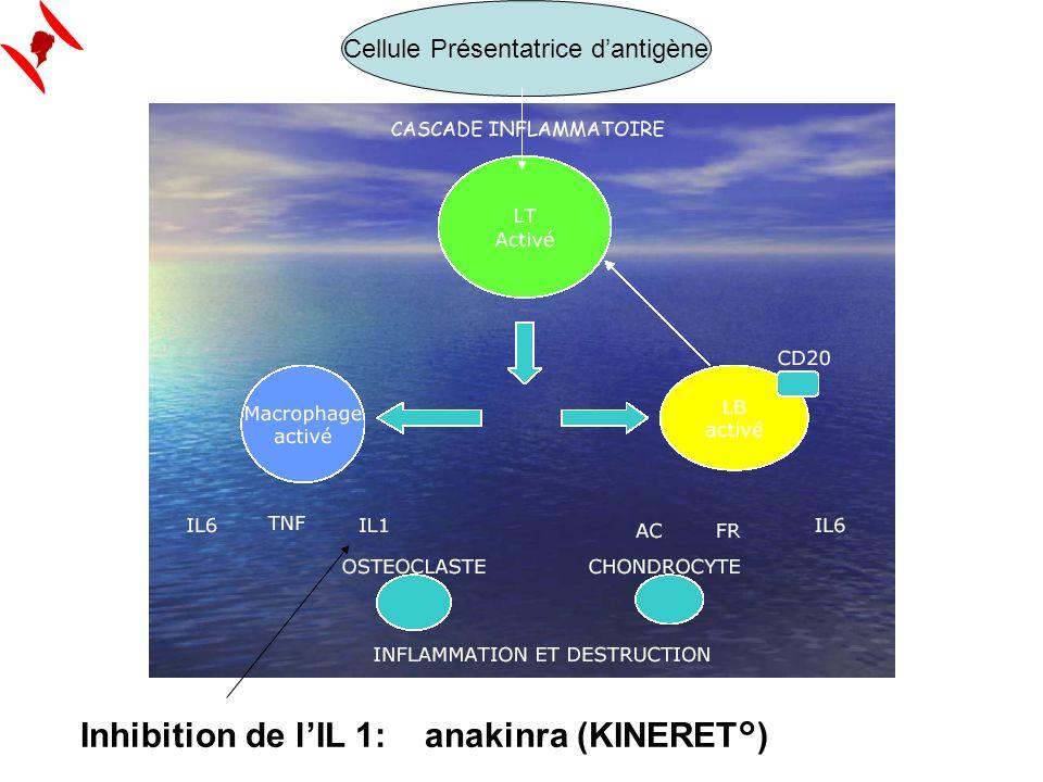 Inhibition de lIL 1: anakinra (KINERET°) Cellule Présentatrice dantigène