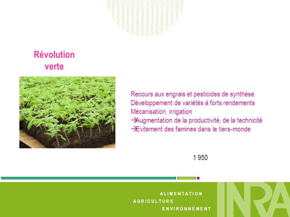 A L I M E N T A T I O N A G R I C U L T U R E E N V I R O N N E M E N T Révolution verte 1 950 Recours aux engrais et pesticides de synthèse Développe