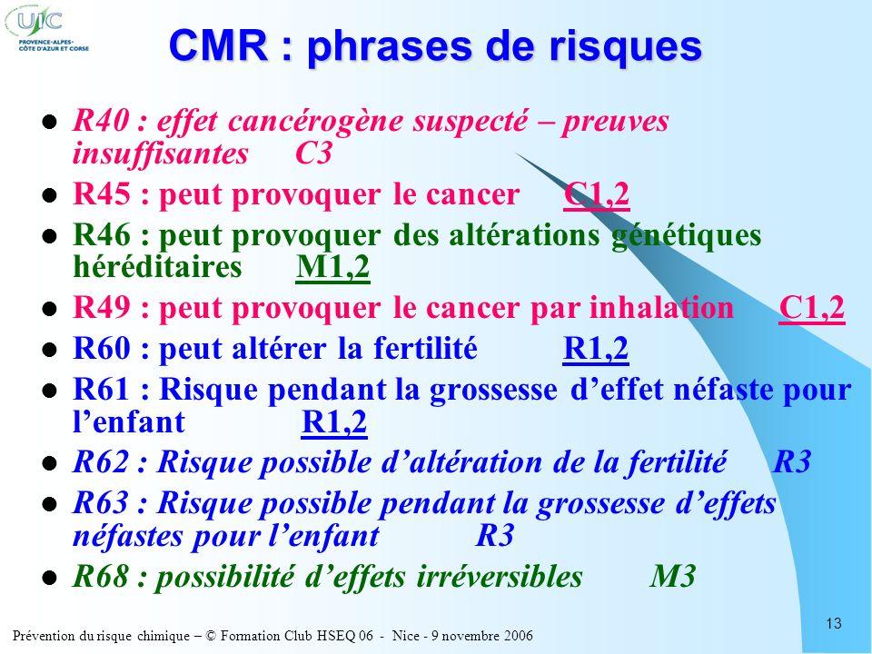 Prévention du risque chimique – © Formation Club HSEQ 06 - Nice - 9 novembre 2006 13 CMR : phrases de risques R40 : effet cancérogène suspecté – preuv
