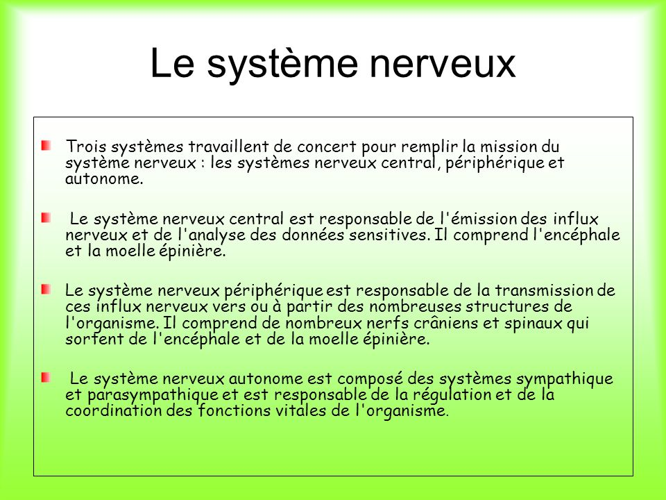 Le système nerveux Trois systèmes travaillent de concert pour remplir la mission du système nerveux : les systèmes nerveux central, périphérique et au
