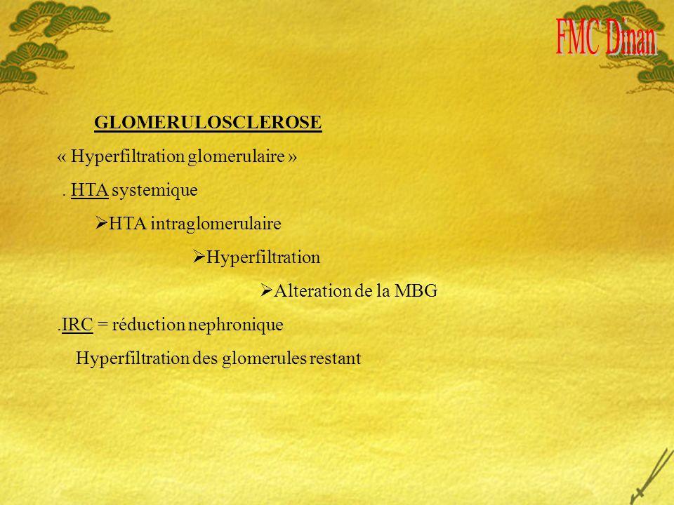 GLOMERULOSCLEROSE « Hyperfiltration glomerulaire ». HTA systemique HTA intraglomerulaire Hyperfiltration Alteration de la MBG.IRC = réduction nephroni