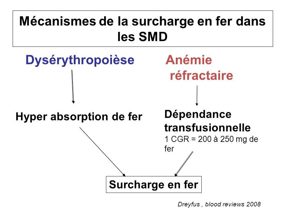 Mécanismes de la surcharge en fer dans les SMD Dysérythropoièse Anémie réfractaire Dreyfus, blood reviews 2008 Surcharge en fer Dépendance transfusion