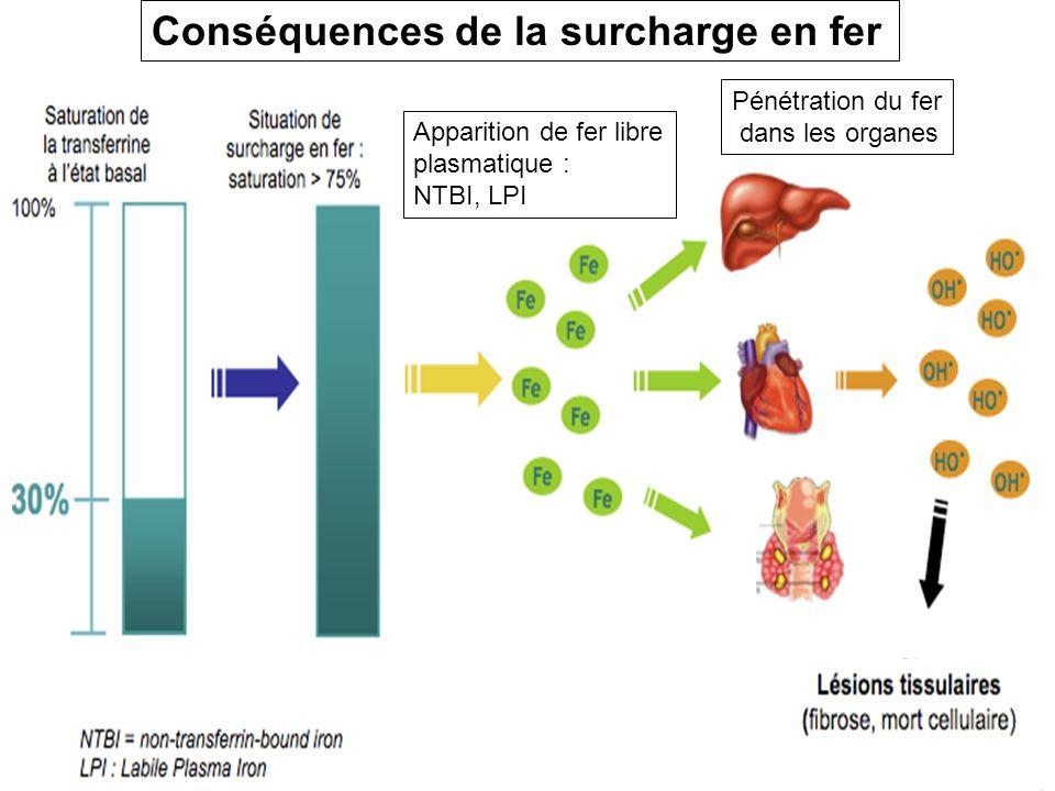 Conséquences de la surcharge en fer Apparition de fer libre plasmatique : NTBI, LPI Pénétration du fer dans les organes