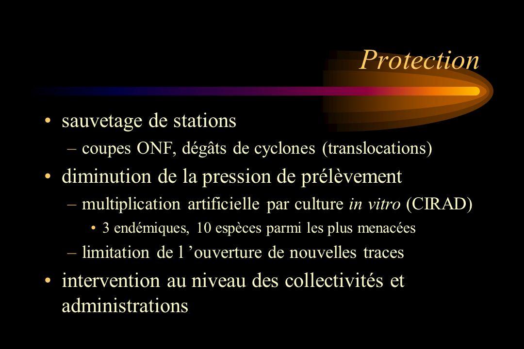 Protection sauvetage de stations –coupes ONF, dégâts de cyclones (translocations) diminution de la pression de prélèvement –multiplication artificiell