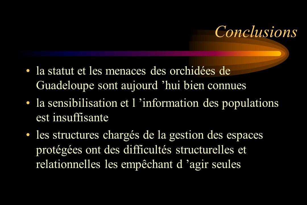 Conclusions la statut et les menaces des orchidées de Guadeloupe sont aujourd hui bien connues la sensibilisation et l information des populations est