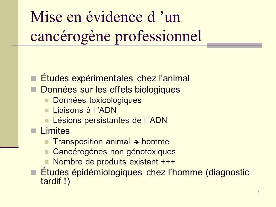 4 Mise en évidence d un cancérogène professionnel Études expérimentales chez lanimal Données sur les effets biologiques Données toxicologiques Liaison