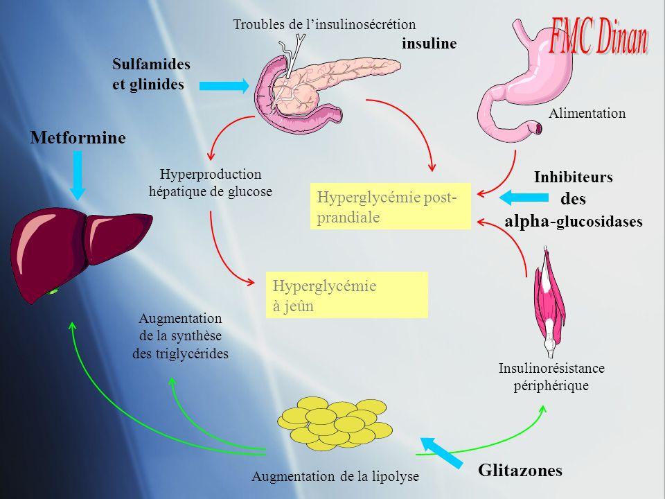 Hyperglycémie post- prandiale Hyperglycémie à jeûn Hyperproduction hépatique de glucose Augmentation de la synthèse des triglycérides Alimentation Tro