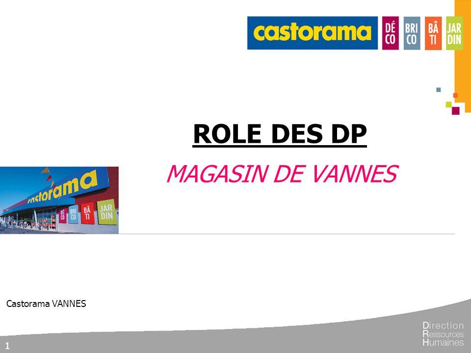 1 ROLE DES DP MAGASIN DE VANNES Castorama VANNES