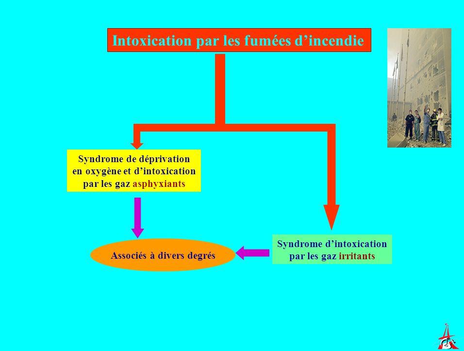 Intoxication par les fumées dincendie Syndrome de déprivation en oxygène et dintoxication par les gaz asphyxiants Syndrome dintoxication par les gaz i
