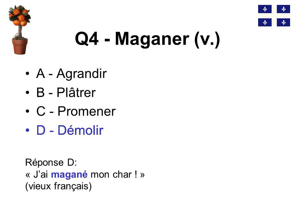 Q3 - Trouver lintrus… A - Un niaiseux B - Un bozo C - Une gugusse D - Un deux watts Réponse C: « Ca sert à quoi cette gugusse (=patente) ?» (niaiseux = bozo = deux watts = imbécile) C - Une gugusse
