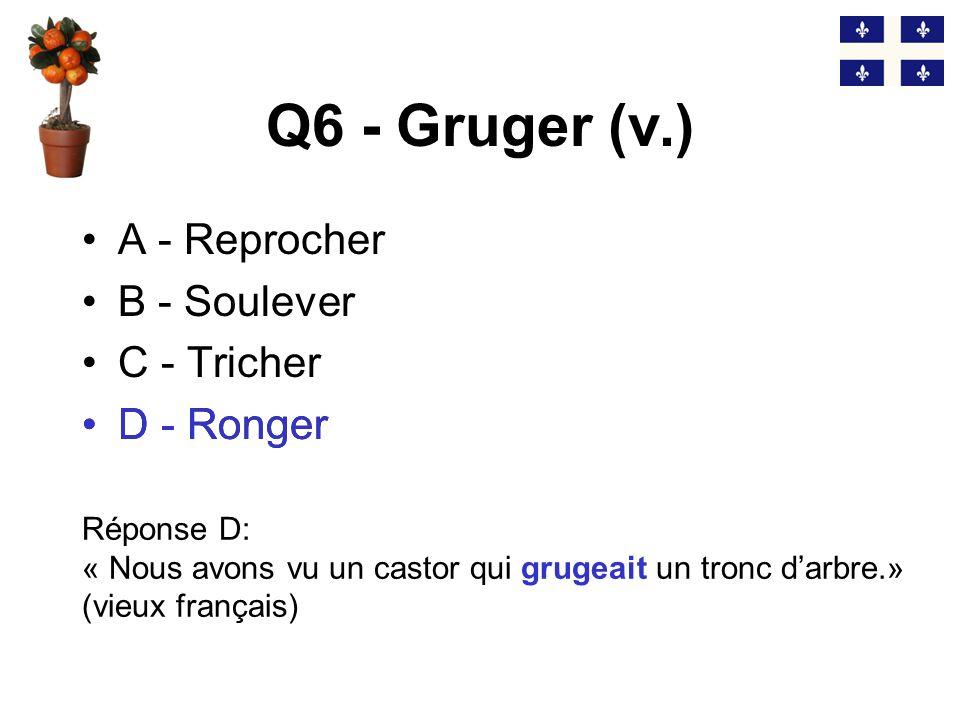 Q5 - Le lousse (n.m.) A - Le dictionnaire B - La marge C - La perte D - La trouille Réponse B: « Sa femme lui donne du lousse.» (anglicisme) B - La marge
