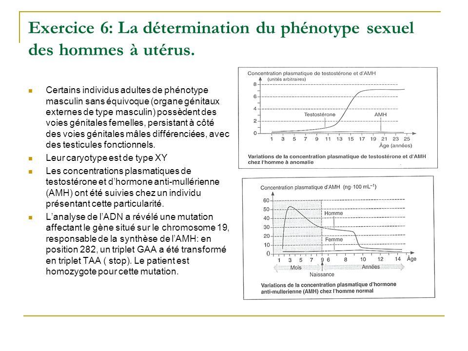 Exercice 6: La détermination du phénotype sexuel des hommes à utérus. Certains individus adultes de phénotype masculin sans équivoque (organe génitaux
