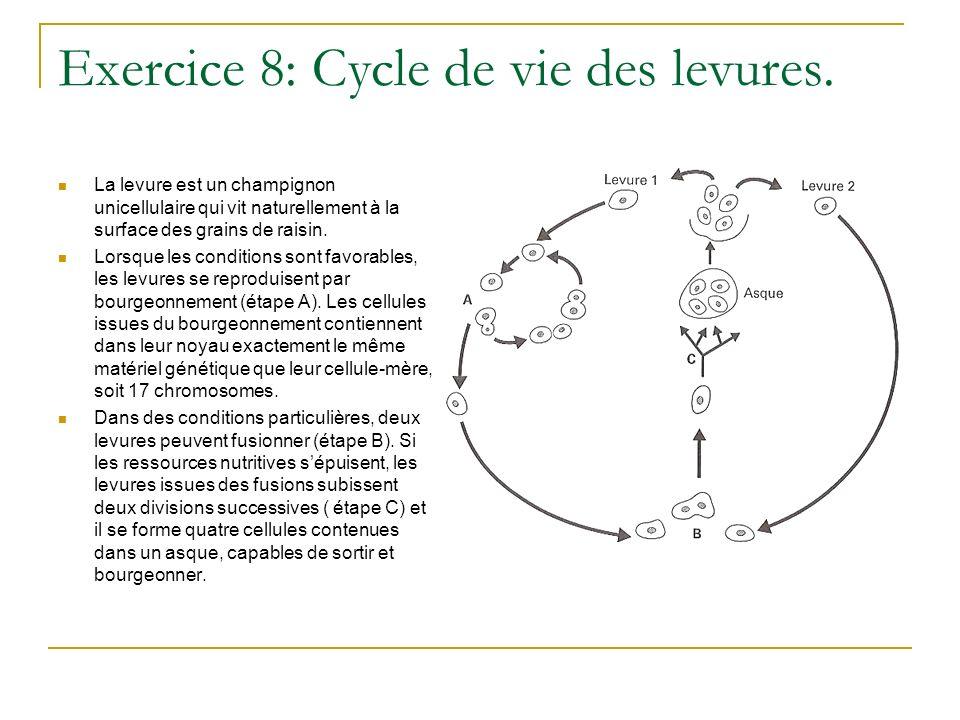 Exercice 9: analyse dun arbre phylogénétique.