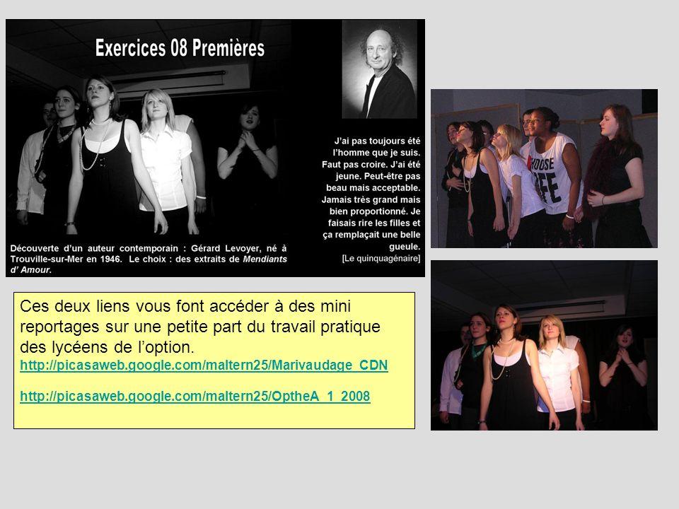 Ces deux liens vous font accéder à des mini reportages sur une petite part du travail pratique des lycéens de loption. http://picasaweb.google.com/mal