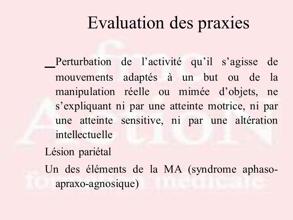 Evaluation des praxies Perturbation de lactivité quil sagisse de mouvements adaptés à un but ou de la manipulation réelle ou mimée dobjets, ne sexpliq