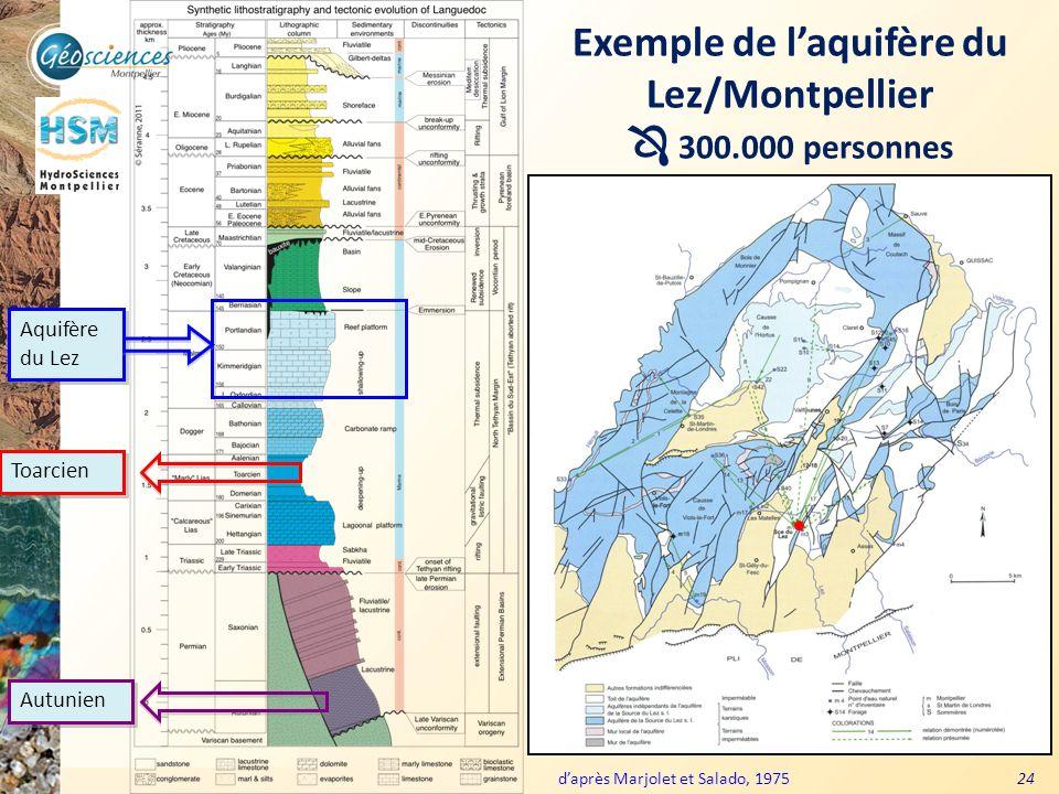 Communauté de Communes du Grand Pic Saint Loup – 3 mars 2011 24 Exemple de laquifère du Lez/Montpellier 300.000 personnes Aquifère du Lez daprès Marjo