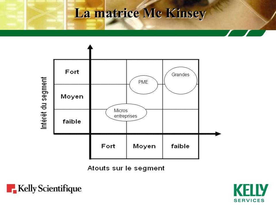 La matrice Mc Kinsey Micros entreprises PME Grandes