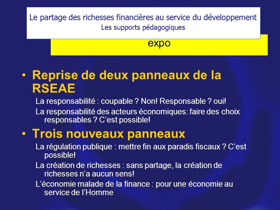 expo Reprise de deux panneaux de la RSEAE La responsabilité : coupable .